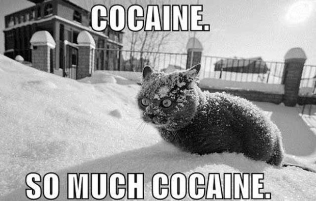 cocaine-chat-flox.jpg